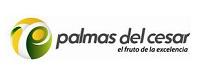Logo palmasdelc